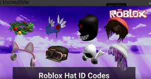 Roblox Hat Codes